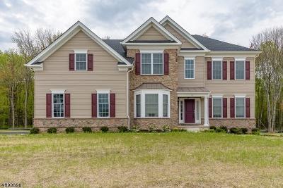 Raritan Twp. Single Family Home For Sale: 9 Tiffany Dr