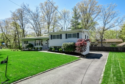 Summit Single Family Home For Sale: 55 Karen Way