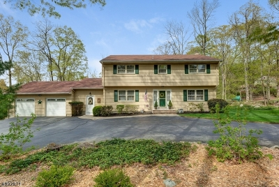 Boonton Twp. Single Family Home For Sale: 19 Cresthill Dr
