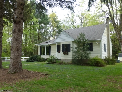 Boonton Twp. Single Family Home For Sale: 1 New Road
