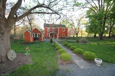 Delaware Twp. Single Family Home For Sale: 456 Rosemont Ringoes Rd