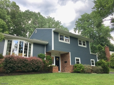 Berkeley Heights Single Family Home For Sale: 98 Cedar Green Ln
