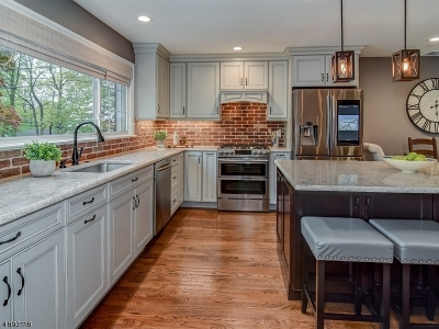 Chatham Boro Single Family Home For Sale: 152 N Passaic Ave