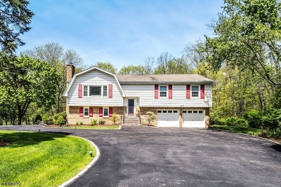 Long Hill Twp Single Family Home For Sale: 56 Madison St