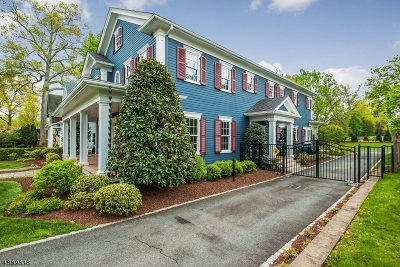 Westfield Town Single Family Home For Sale: 703 Prospect St