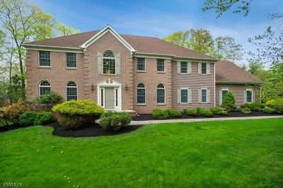 Bridgewater Twp. Single Family Home For Sale: 26 Winslow Dr