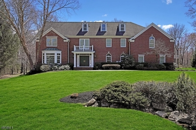 Bernards Twp. Single Family Home For Sale: 55 Butternut Ln