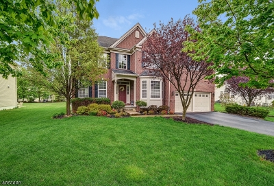 Clinton Twp. Single Family Home For Sale: 52 Crestview Dr