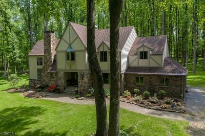 Delaware Twp. Single Family Home For Sale: 30 Locktown Sergeantsville