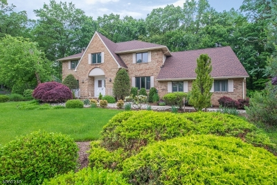 Wyckoff Twp. Single Family Home For Sale: 538 Farview Ct