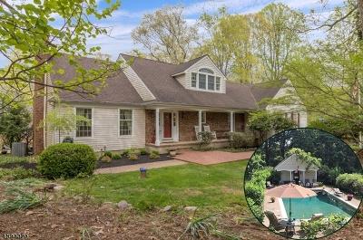 Alexandria Twp. Single Family Home For Sale: 3 Stonewicke Dr