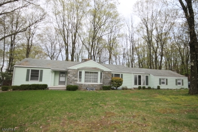 Parsippany-Troy Hills Twp. Single Family Home For Sale: 1 Puddingstone Rd