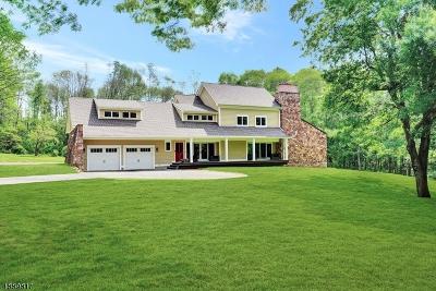 Bedminster Twp., Bridgewater Twp., Bernardsville Boro, Far Hills Boro, Mendham Boro, Peapack Gladstone Boro, Harding Twp. Single Family Home For Sale: 156 Pleasantville Road