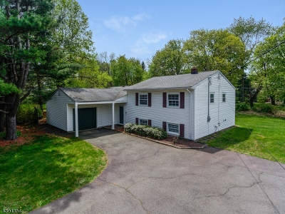 Bernards Twp. Single Family Home For Sale: 333 Mt Airy Rd
