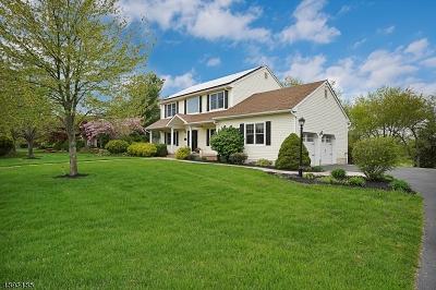 Franklin Twp. Single Family Home For Sale: 35 Zeller Dr