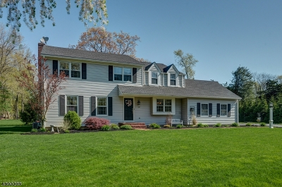 Bernards Twp. Single Family Home For Sale: 27 Kensington Road
