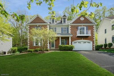 Bernards Twp., Bernardsville Boro Single Family Home For Sale: 16 Hamilton Rd
