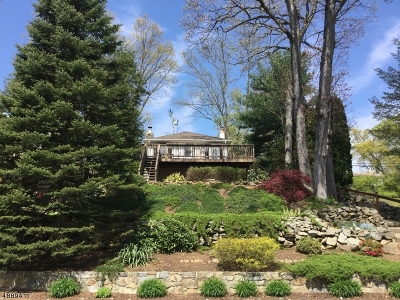 Denville Twp. Single Family Home For Sale: 29 Lake Rd