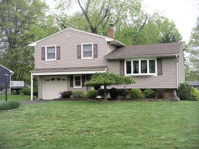 Bridgewater Twp. Single Family Home For Sale: 103 Timothy Pl