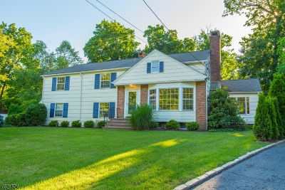 Madison Boro Single Family Home For Sale: 8 Carteret Ct