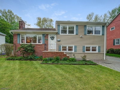 Chatham Boro Single Family Home For Sale: 33 Kings Rd