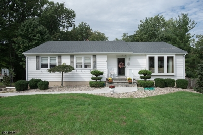 Long Hill Twp Single Family Home For Sale: 36 Johnson Ave