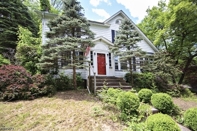 Morris Twp. Single Family Home For Sale: 23 W Lake Blvd