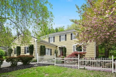 Montgomery Twp. Single Family Home For Sale: 290 Grandview Rd