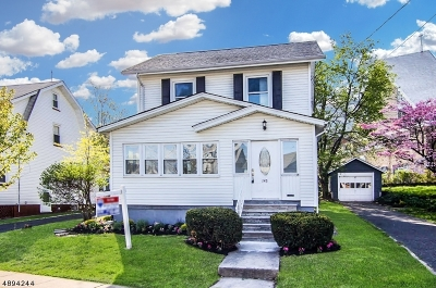 Maplewood Twp. Single Family Home For Sale: 145 Franklin Ter