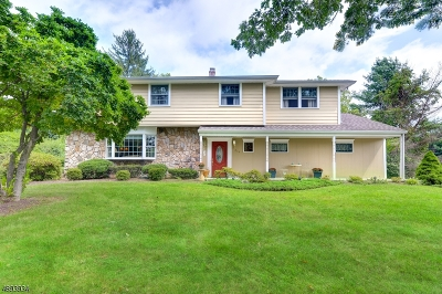Wyckoff Twp. Single Family Home For Sale: 354 Steinhauser Ln