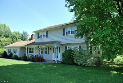 Raritan Twp. Single Family Home For Sale: 3 Country Club Dr