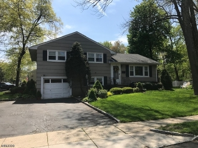 Chatham Boro Single Family Home For Sale: 29 Weston Ave