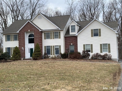 Randolph Twp. Single Family Home For Sale: 6 Tamari Ct