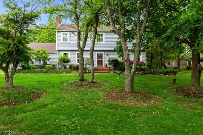 Hillsborough Twp. Single Family Home For Sale: 600 S Woods Rd