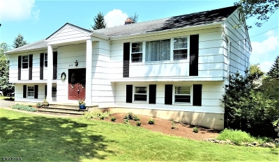 Morristown Town, Morris Twp. Single Family Home For Sale: 60 Kahdena Rd