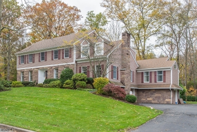 Wyckoff Twp. Single Family Home For Sale: 317 Paul Ct