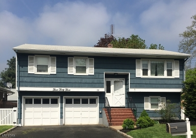Scotch Plains Twp. Single Family Home For Sale: 333 Stout Ave
