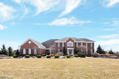 Alexandria Twp. Single Family Home For Sale: 4 Woodline Way