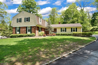 Long Hill Twp Single Family Home For Sale: 63 Skyline Dr
