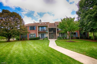 Bernards Twp. Condo/Townhouse For Sale: 214 Irving Pl