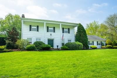Scotch Plains Twp. Single Family Home For Sale: 6 Wellington Downs