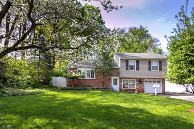 Morristown Town, Morris Twp. Single Family Home For Sale: 95 Mill Rd