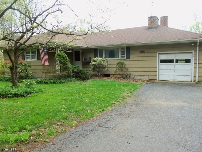 Bernards Twp. Single Family Home For Sale: 96 Lake Rd