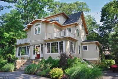 Mountain Lakes Boro Single Family Home For Sale: 381 Morris Ave