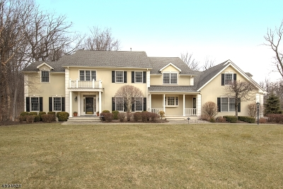 Mendham Boro, Mendham Twp. Single Family Home For Sale: 5 Rockwell Ct