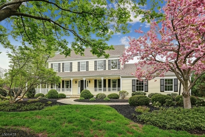 Montgomery Twp. Single Family Home For Sale: 20 Black Horse Run