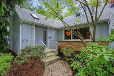 WestField Single Family Home For Sale: 858 Village Green