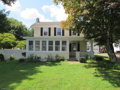 Warren County Single Family Home For Sale: 133 Belvidere Ave