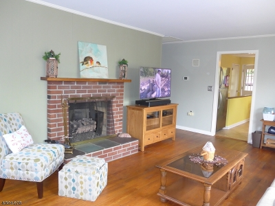 Boonton Town Single Family Home For Sale: 510 Essex Ave