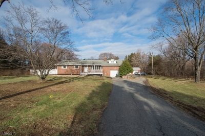 Mount Olive Twp. Single Family Home For Sale: 125 Flanders Drakestown Road